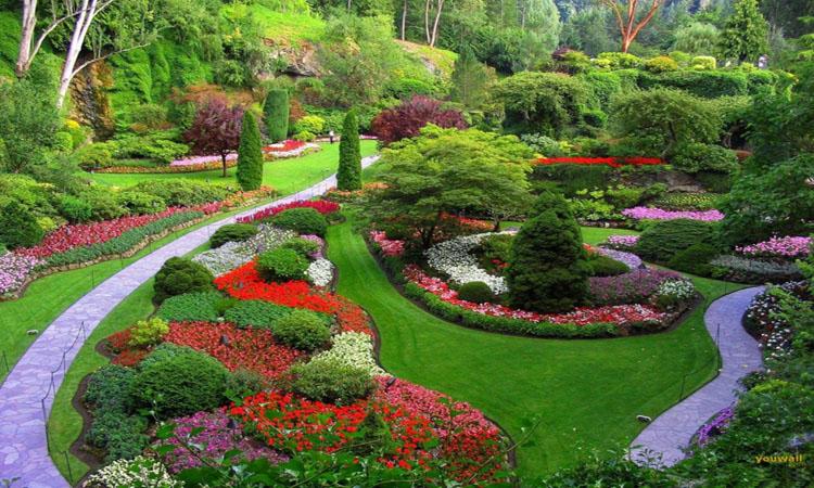 krasna-zahrada-5